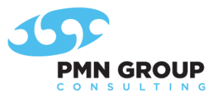 PMN Group Consulting logo